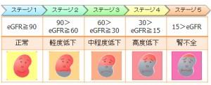 eGFR-44278